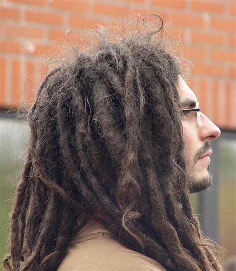 dreadlocks budding process introductory about bob marley and rastafari haartism