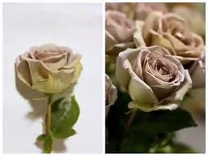 Vintage Flower Arrangement - amnesia rose pennock floral