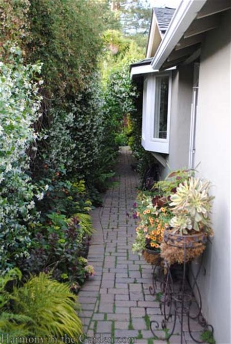 transforming a side yard from blah to beautiful curved