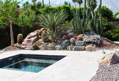 landscaping with succulents landscaping network