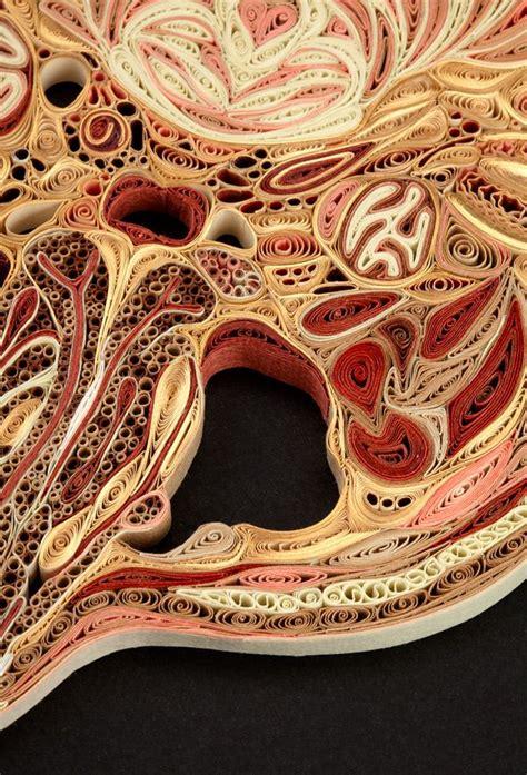 human bone cross section 246 best images about art class steam on pinterest