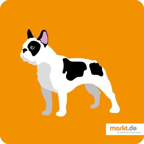 Mit Freundlichen Grüßen Franz Franz 246 Sische Bulldogge Rasseportrait Markt De