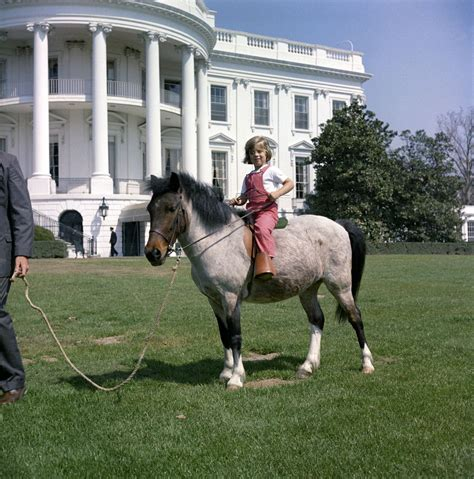 How Old Is Caroline Kennedy kn c20777 caroline kennedy with her pony macaroni john