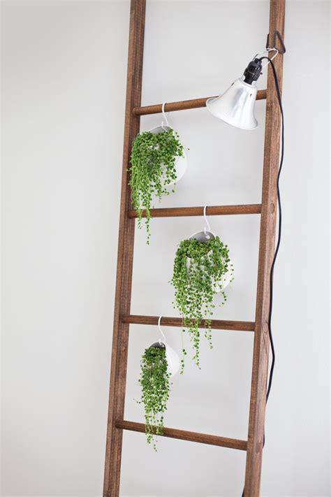 Bookshelf Bench 17 meilleures id 233 es 224 propos de plantes suspendues sur