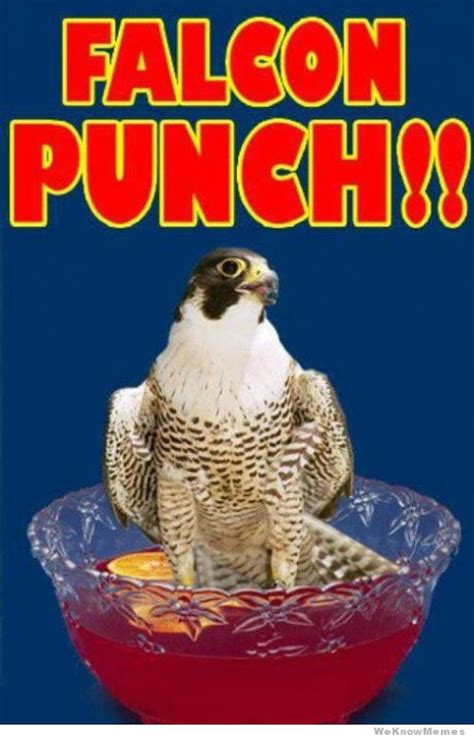 Falcon Punch Meme - falcon punch meme www imgkid com the image kid has it
