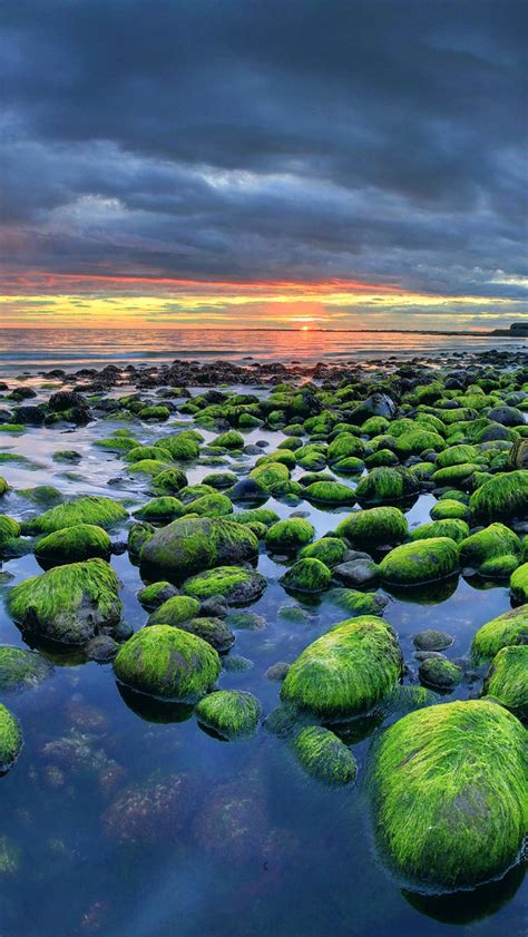 iceland green rocks coast sunset iphone  wallpaper hd