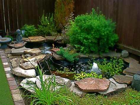 backyard small pond backyard corner pond