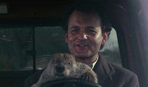 groundhog day insurance show me real worth