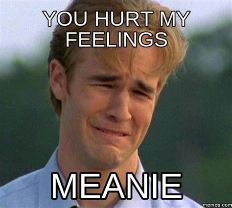 Feelings Meme - you hurt my feelings meanie memescom pictures