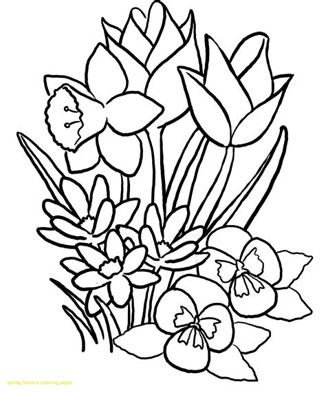 spring flower coloring pages flowers coloring sheet spring flowers coloring pages with spring flower coloring