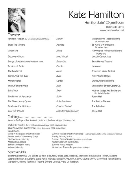 beautiful best resumes examples ceo resume ceo cv ceo resume samples