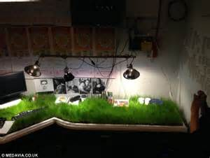 Office Desk Grass What On Turf Is Growing On My Desk Engineer Returns From