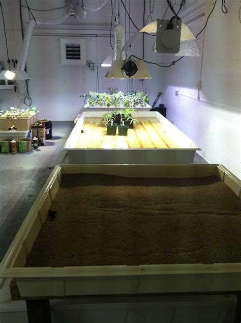 hydroponic grow room 15 best images about grow room ideas on gardens grow and growing plants