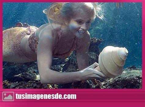 imagenes reales hermosas sirenas bonitas reales www pixshark com images