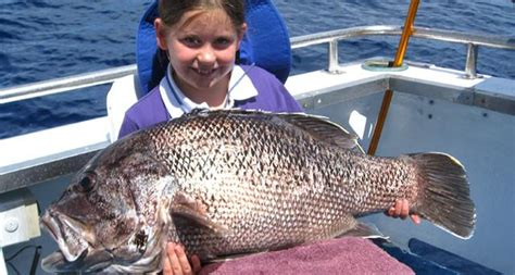 fishing boat charters mandurah aqualib marine charters in port mandurah city of mandurah