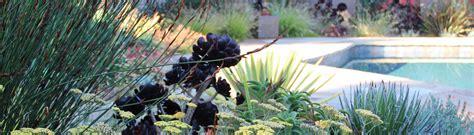 bliss home design reviews bliss garden design bainbridge island wa us