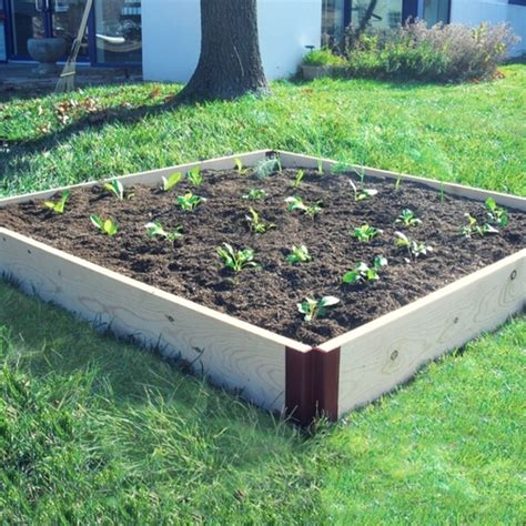 raised cedar garden bed 1 quot x6 quot cedar raised garden bed sandbox 4x4 kit grow it now