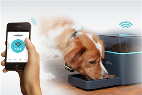 Pet Technology | technology that takes care of your pet