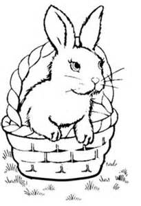 can rabbits see color 1000 images about bunny on bunny coloring