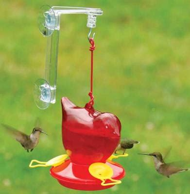 Food For Hummingbird Feeders hummingbird feeder food
