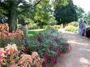 Garden ideas full sun home inspirations cheap flower garden