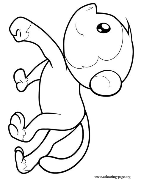 coloring pages of sock monkey sock monkey coloring pages printable printable sock