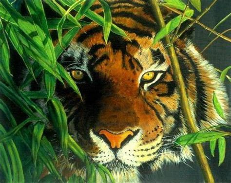Painting Tiger realistic tiger and leopard paintings