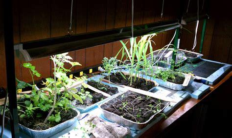 keys  lighting  indoor gardening system gardenerd