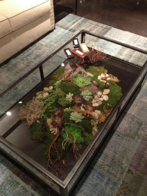 terrarium coffee table pin by crystal chapel on future home sweet home