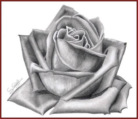 imagenes de flores sombreadas imagenes de rosas para dibujar a lapiz archivos imagenes