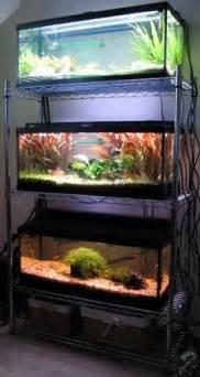 diy aquarium stands thread diy multi aquarium stand