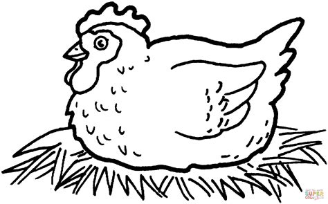 printable coloring page of a chicken hen hatching chicken eggs coloring page free printable