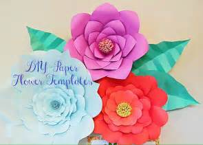 Diy Flower Template by Paper Flower Templates Large Diy Backdrop Flowers