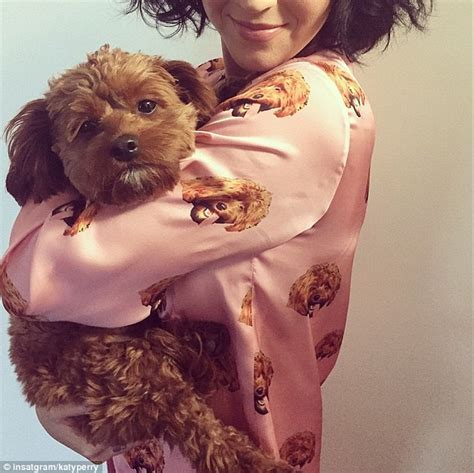 katy perry puppy katy perry in pajamas printed with s in instagram snap daily mail