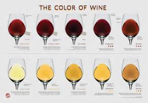 white is not a color the wine color chart wine folly