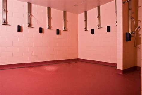 pink locker room the many manifestations of the color pink arts culture smithsonian