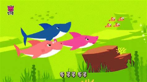 baby shark kpop 상어 상어가족 상어송 상어노래 gif babyshark swimming korean