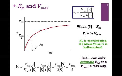 How To Calculate Vmax And Km From A Lineweaver And Burk Plot Youtube | 045 kinetic constants km vmax youtube