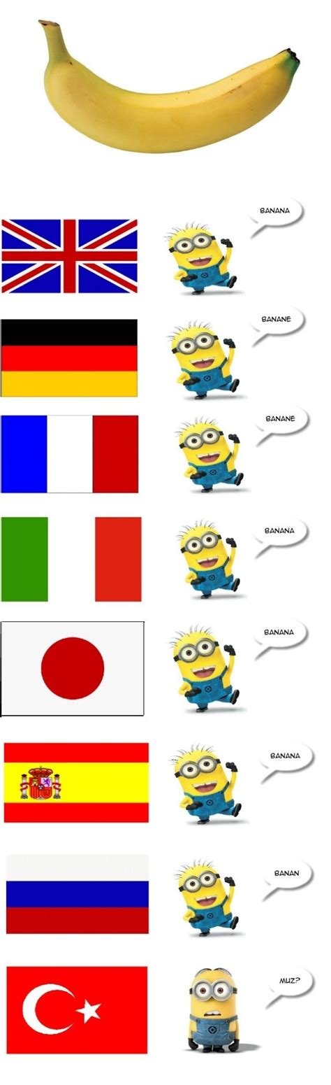 Different Languages Meme - banana in different languages funlexia funny pictures