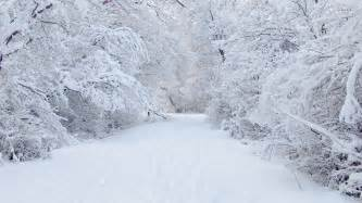 Snow Images Chionophobia Phobia Wiki Fandom Powered By Wikia