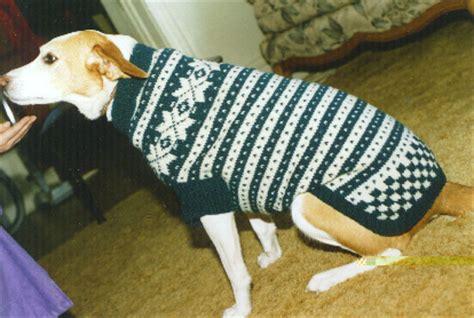 knitting pattern dog jersey knit winter dog sweater pattern for acd shaped dog