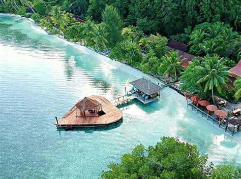 raja at dive lodge resort raja at dive lodge pulau mansuar indonesia booking