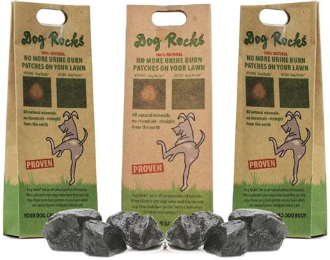 urine killing grass urine killing grass rocks and other lawn burn solutions pet territory