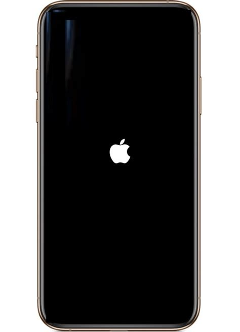 force reboot iphone xs max iphone xs iphone xr