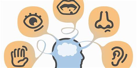 imagenes marketing sensorial projeto sobre os cinco sentidos na educa 231 227 o infantil