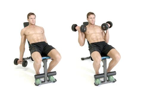 incline bench bicep curls dumbbell alternate bicep curl
