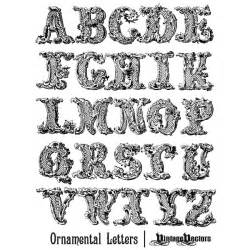vector decorative ornamental letters of the