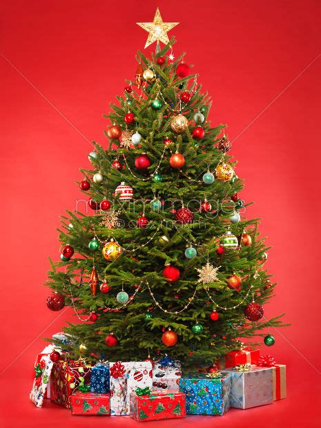 photo  decorated christmas tree  red  presents