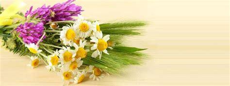 composizioni fiori secchi on line fiori finti composizioni di fiori trovare fiori