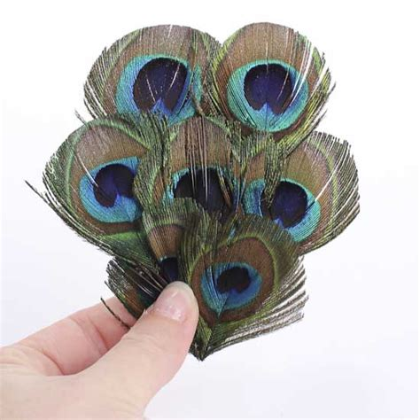 how to make layers feather layered peacock eye feather accessory feathers boas